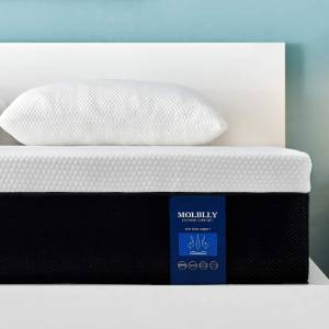Molblly Extreme Comfort
