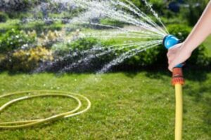 a-person-watering-the-lawn