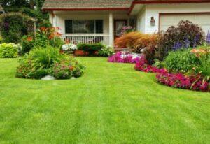 beautiful-manicured-yard
