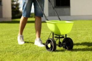 man-feeding-grass-using-spreader