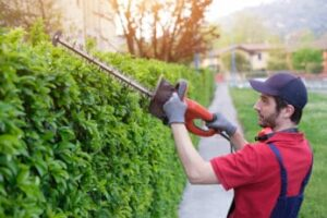 man-using-the-best-electric-hedge-trimmer