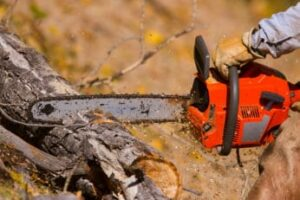 person-cutting-wood-with-a-chainsaw