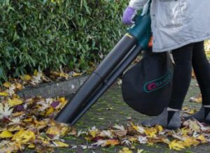 vacuuming-leaves-in-a-pathway
