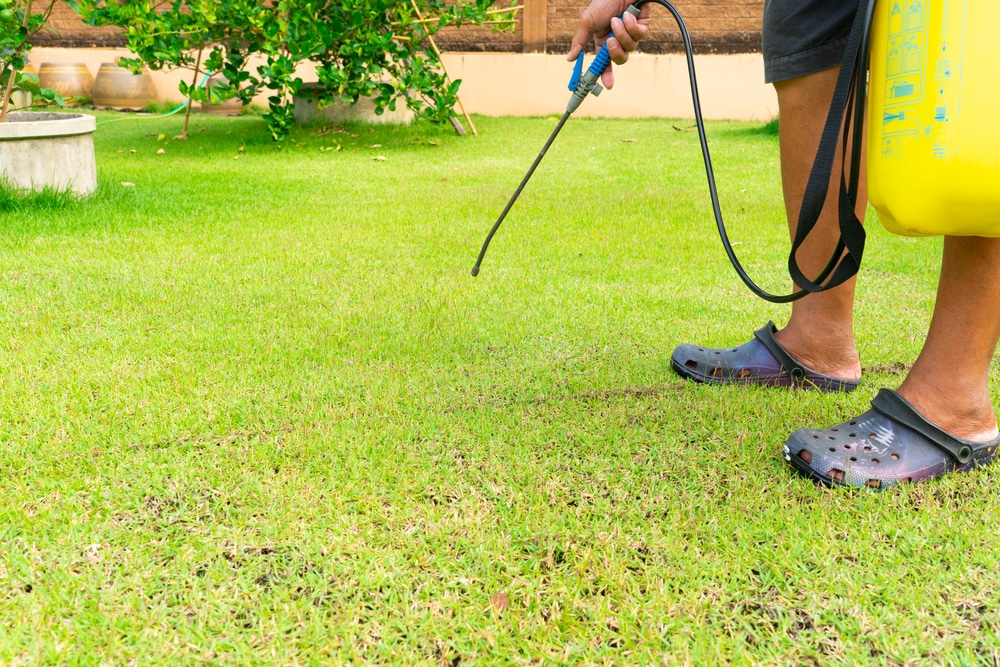 How Does a Weed Killer Work