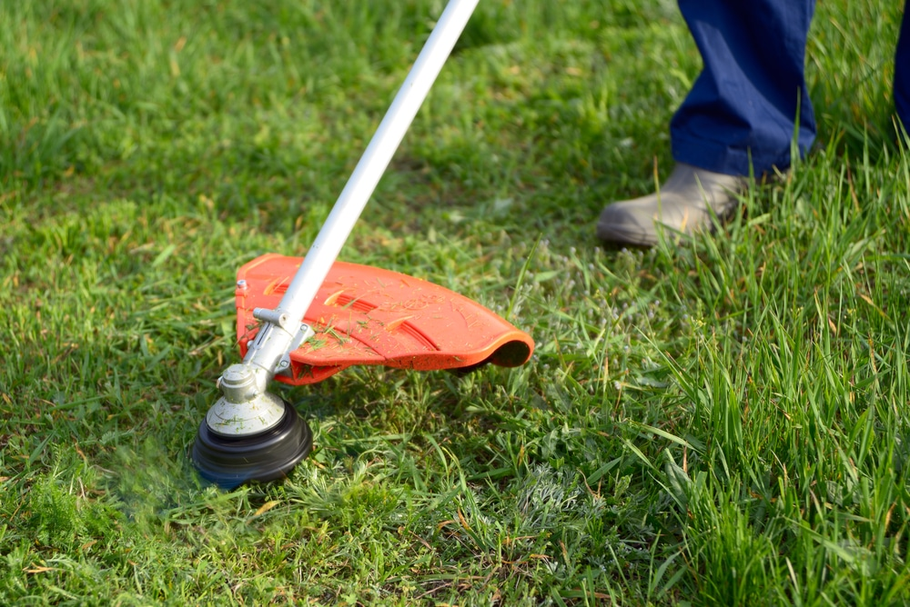 How to Replace a Strimmer Wire