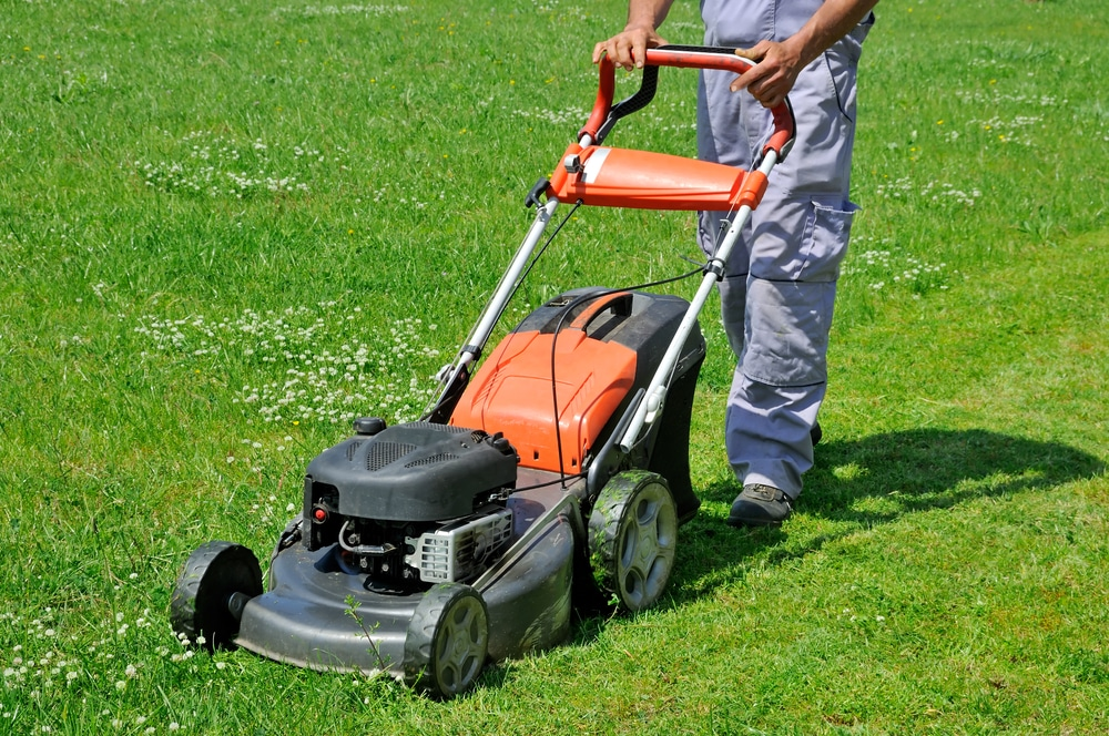 Which Is Better, Petrol or Electric Lawnmower
