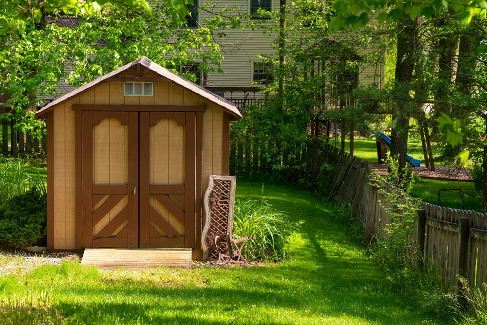 how to get rid of rats in a garden shed