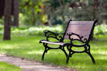 stylish-bench-in-park