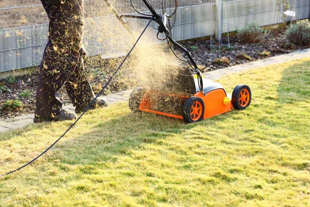 what is the difference between a lawn rake and scarifier