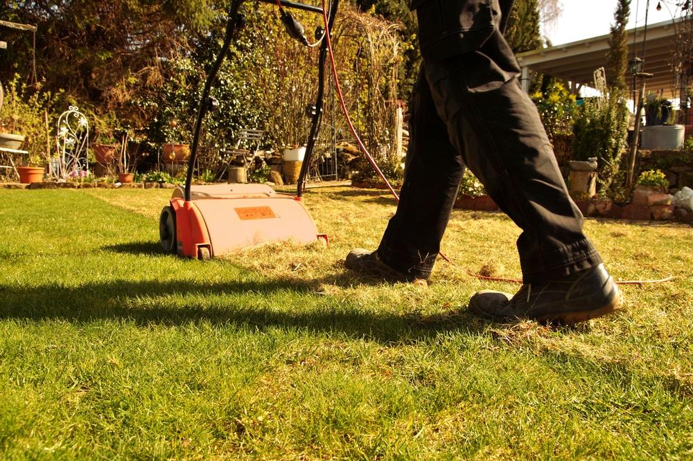 what is a lawn scarifier